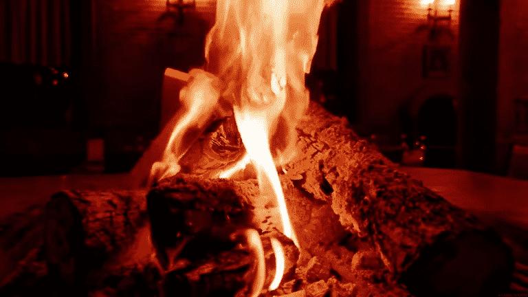 estufa leña y pellets